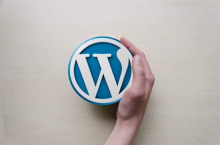 Word Press Web Designer
